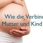 Wie die Verbindung von Mutter und Kind entsteht