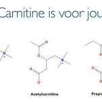 Welke vorm van carnitine is geschikt voor jou?