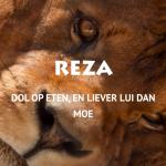 Reza: onze nieuwe aanwinst van Stichting AAP!